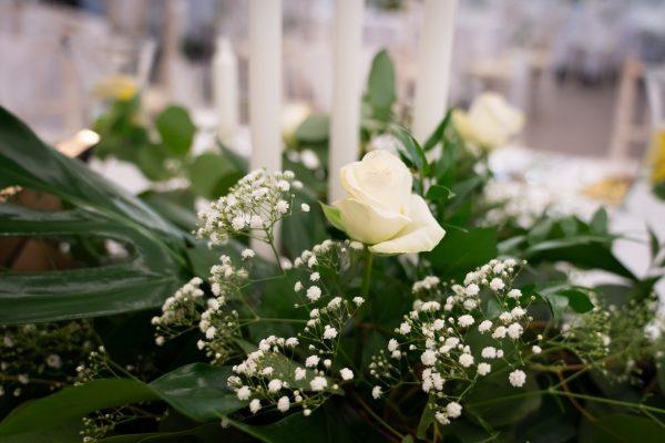 Adell Decor - biela ruža