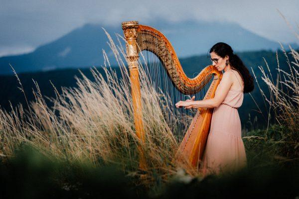Múzy tvorivé - Umelecké zoskupenie - hra na harfe 2